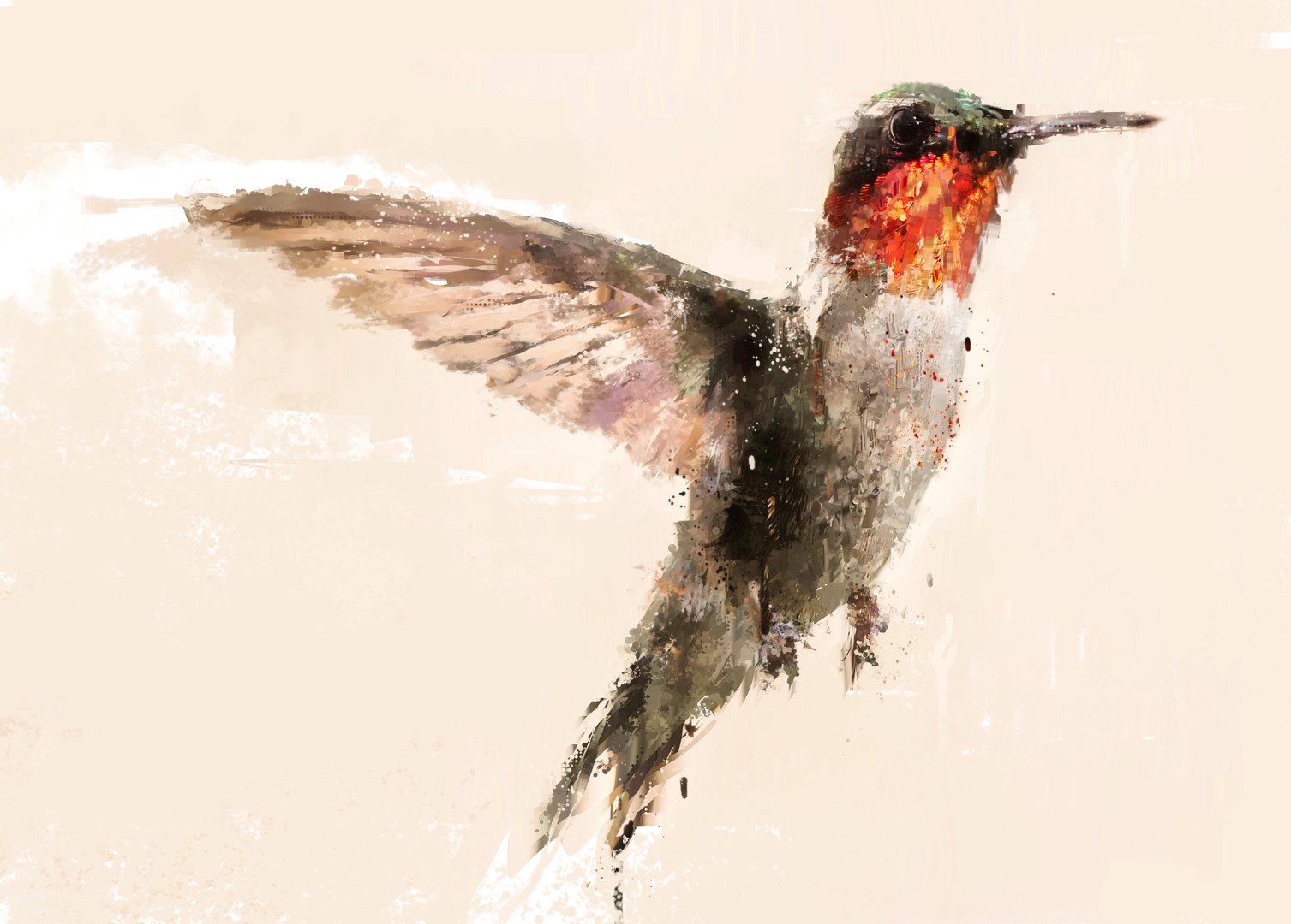 hummingbird (Large).jpg